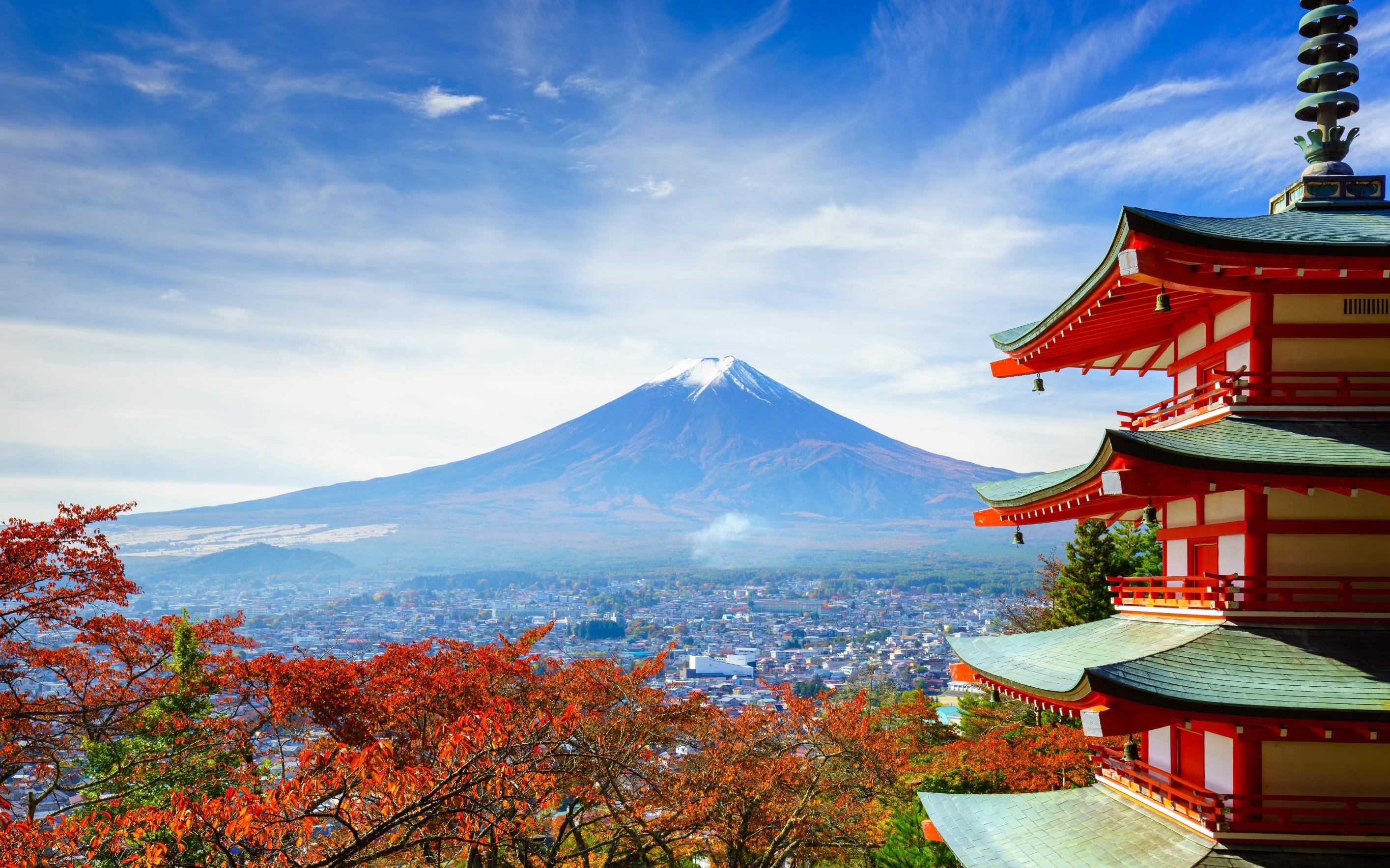 japan group tour topdeck